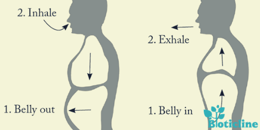Belly breathing technique