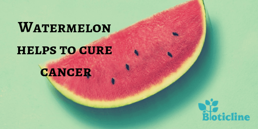 Watermelon help to cure cancer